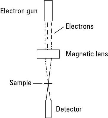 Diagram of a transmission electron microscope complete wiring see at the nano level with electron microscopy dummies rh dummies com scanning electron microscope diagram schematic diagram of transmission electron ccuart Gallery