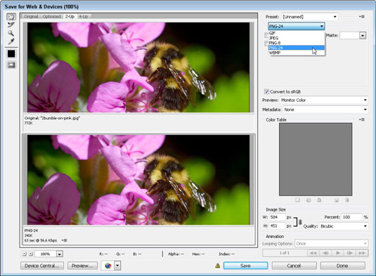 Use the Best Image Formats and Sizes - dummies