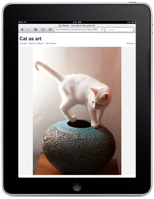 The high-resolution screen on the iPad makes it an ideal device for viewing photos and videos.