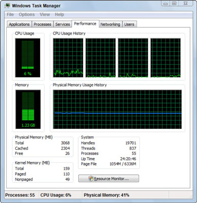 The Windows Task Manager.