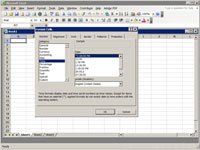 Format Cells dialog box on Microsoft Excel.