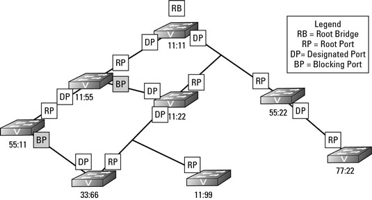 spanning tree protocol  stp  introduction