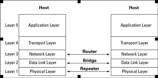 Network interconnection devices and TCP/IP protocol layers.