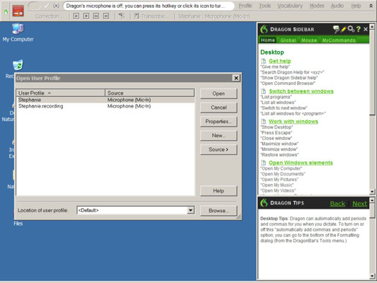 The User Profile window in Dragon NaturallySpeaking.
