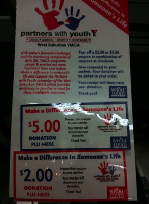Partners in Youth flyer.