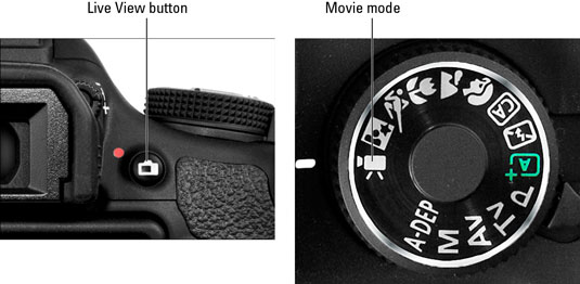 Live View Options on Canon EOS Rebel T3 Series Cameras - dummies
