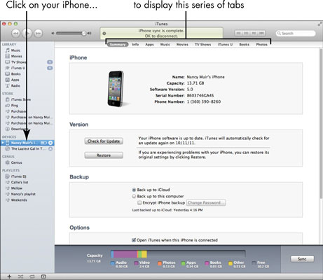 How to Make iPhone Settings Using iTunes - dummies