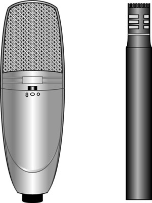 Condenser mics can have either large or small diaphragms.