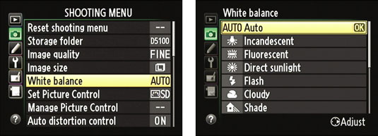 how to change white balance settings on a nikon d5100 dummies rh dummies com Nikon D5100 Photo Gallery Shot with Nikon D5100