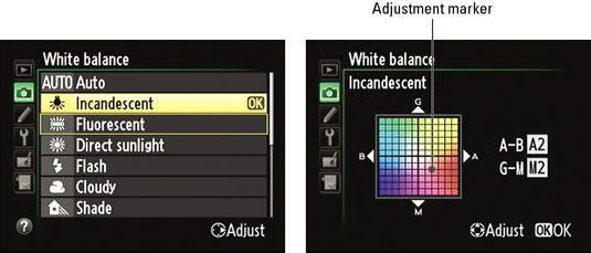 how to customize white balance settings on a nikon dslr dummies rh dummies com Nikon D7000 Accessories manual white balance nikon d7000