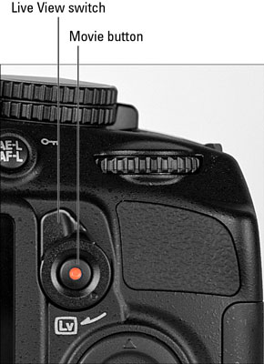 The Live View button in a Nikon 3100 DSLR camera