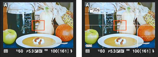 Nikon's display screen with and without a framing grid.
