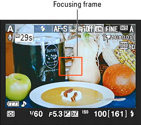 The Focusing Fram in a Nikon's Live View.