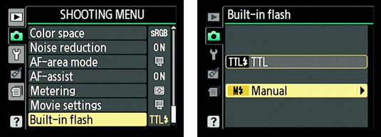 How to Control Flash Output Manually with a Nikon D3100 - dummies