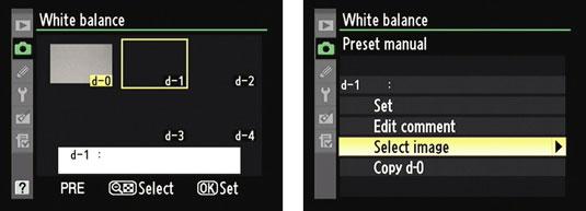 creating presets for white balance on a nikon d7000 dummies rh dummies com Pictures Taken with Nikon D7000 custom white balance d7000