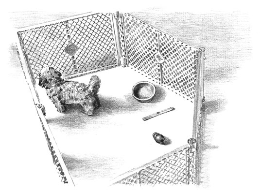 A playpen is a safe and portable place for your puppy to stay. [Credit: Illustration by Barbara Fra