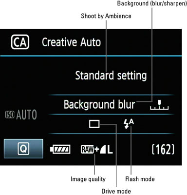 Creative Auto Function on the Canon EOS 60D - dummies