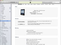 An iPad's description page in iTunes.