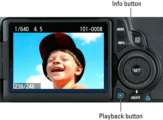 How to View Images in Playback on a Canon EOS 60D - dummies