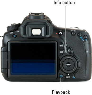 Image Playback Picture Data Options on a Canon 60D - dummies
