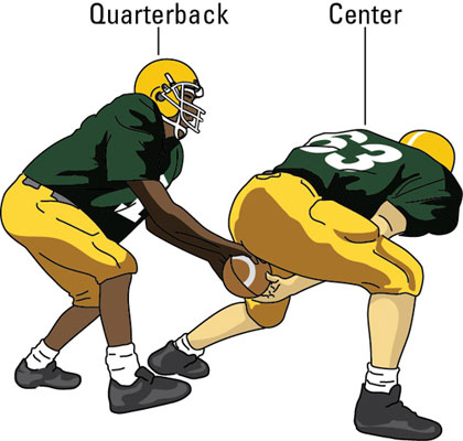 the center snaps the ball to the quarterback.