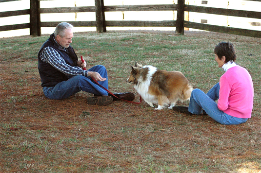 Two people teaching the Come command to a rough collie.