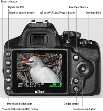Nikon d3200 digitour daniele armillotta.