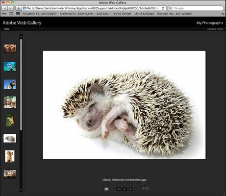 [Credit: ©iStockphoto.com/SAMI photo Image #4831034]
