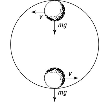The force and velocity of a ball on a circular track.