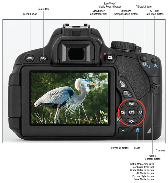 canon eos rebel t4i 650d for dummies cheat sheet dummies rh dummies com Canon EOS Canon T4i Specs