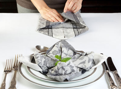How To Make Fancy Folded Napkins Dummies
