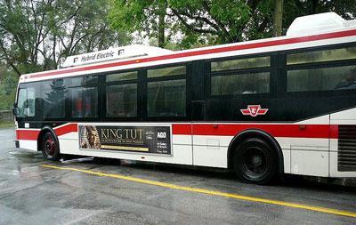 [Credit: TCC Bus Photo credit:
