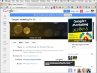 The Google+ page for a Dummies book.
