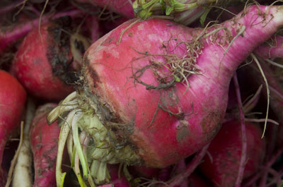 Keeping it real with these dirty, rustic beets from the farmers' market. [Credit: Focal lengt