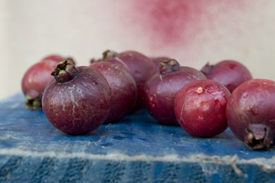 These red mini guavas were shot at 55mm. [Credit: Focal length: 55mm, Shutter speed: 1/10 sec., Ape