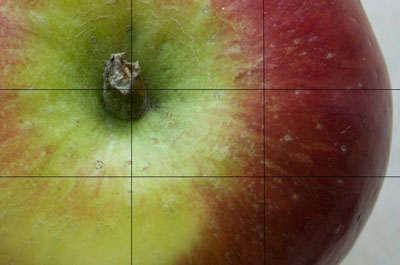 Use the rule of thirds to place your food subject in the frame.