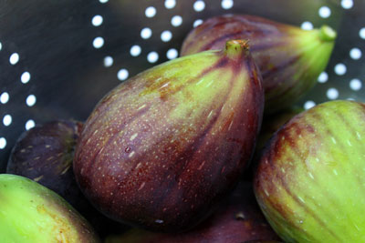 Placing these figs in a metal colander gives this image a down-to-earth, practical look. [Credit: F