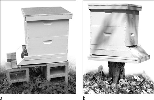 You can use cinder blocks<b></noscript><i> </i></b>or a level tree stump to elevate your hives off the damp gr&#8221;/></p> <div class=