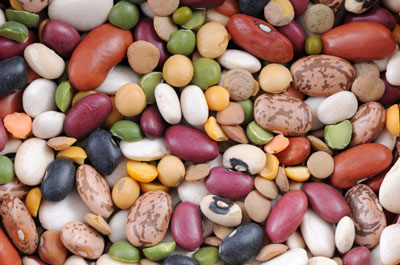 lentils, black beans, pinto beans, and red beans