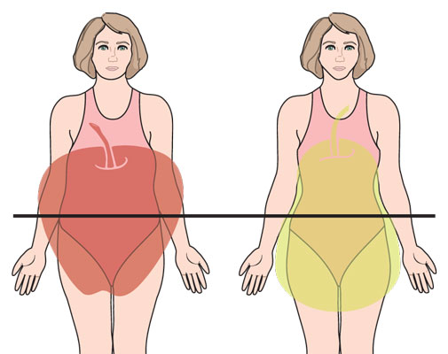 Know your body type to start losing belly fat dummies 15 ccuart Choice Image