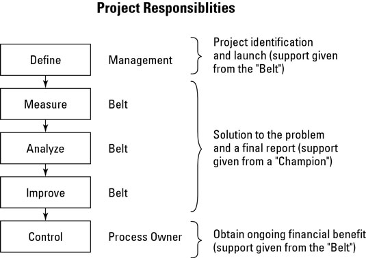 Project responsibilities in Sigma Six.