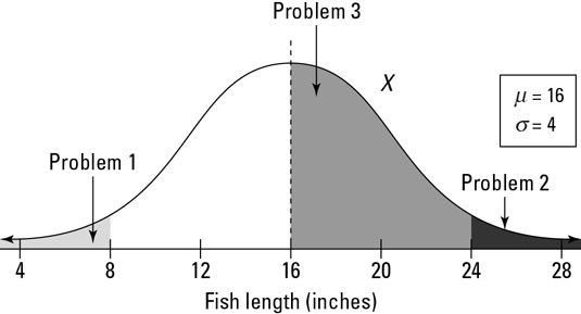 The distribution of fish lengths in a pond