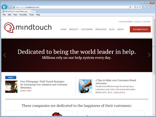 The Mindtouch web site.
