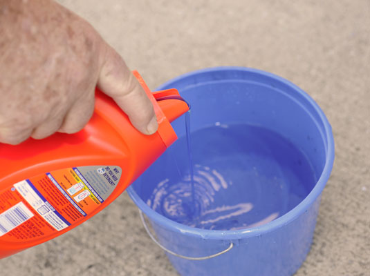 how to clean mold off of a concrete floor