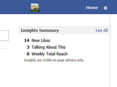 Facebook page's Insights Summary.