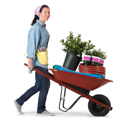 A woman pushing a wheelbarrow filled with gardening utensils.