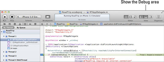 The Debug section in the iOS 6 app developer.