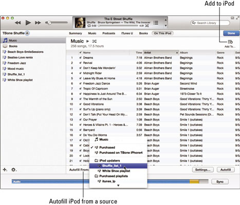 How to Manage Your iPod Library Manually - dummies