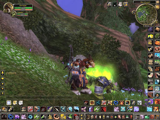The World of Warcraft, a massive multiplayer online game that has outlasted all competitors.
