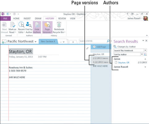How to View Versions and Authors in OneNote - dummies